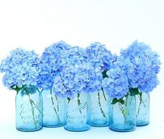 Blue hydrangeas in vintage blue mason jars