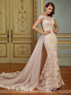 2017 DAVID TUTERA FOR MON CHERI - ZERRIN GOWN Embroidered Schiffli lace appliqué on tulle over organza fit and flare gown with illusion scalloped lace cap sleeves, illusion scalloped lace bateau neckline, sweetheart bodice, illusion back with crystal buttons, scalloped hemline and sweep train, dramatic detachable chapel length tulle train with scalloped lace trim.