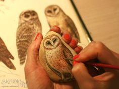 While painting the Tyto alba owl