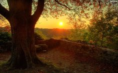 Autumn Sunset Wallpaper   Background Download
