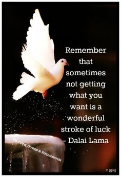 Sometimes not getting what you want, is a wonderful stroke of luck ~ Dalai Lama