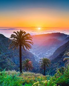 #LaPalma is a pristine paradise set against a backdrop of volcanic landscape  One of the #CanaryIslands and maybe the most beautiful. Have you visited?