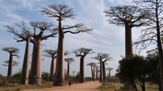 Strange Natural Wonders of the World (PHOTOS) | The Weather Channel