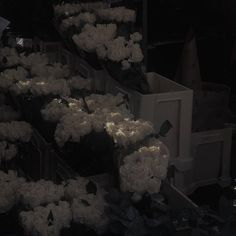 white roses milk coffee dark grunge aesthetic soft minimalistic light korean kawaii grunge cute kpop pretty photography art artistic ethereal g e o r g i a n a : e t h e r e a l Gray Aesthetic, Night Aesthetic, Aesthetic Themes, Aesthetic Images, Aesthetic Backgrounds, Aesthetic Photo, Aesthetic Wallpapers, Japanese Aesthetic, Paradis Sombre