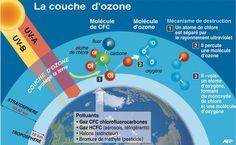 Localisation de la couche d'ozone et mécanisme de sa destruction.