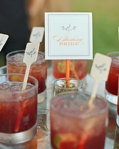 """Signature Cocktails-""""Blushing Bride"""" vodka and cranberry drinks garnished with wooden stir sticks custom-printed with a bird design. (http://www.marthastewartweddings.com/231837/carter-and-fred-charleston-south-carolina/@center/272446/real-weddings#/170832)"""