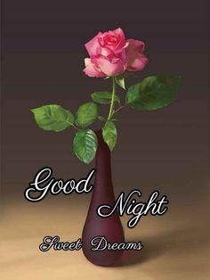 Good Night Hindi, Good Night Images Hd, Good Morning Beautiful Images, Good Night Quotes, Beautiful Pictures, Good Morning Nature, Good Morning Good Night, Sweet Night, Good Night Sweet Dreams