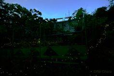 aioiyama2_2.jpg (1600×1067)