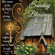 Saturday Blessings In the Lord Have A Blessed Day good morning sunday sunday… Happy Sunday Morning, Sunday Wishes, Good Morning Angel, Fathers Day Wishes, Happy Sunday Quotes, Good Morning Picture, Good Morning Messages, Morning Greetings Quotes, Good Morning Quotes