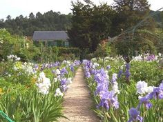 Photo Essay: Giverny and the Water Pond:  Part of Monet's Legacy