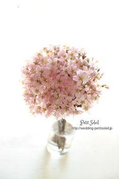 桜のブーケ サクラ さくら