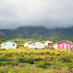 A misty morning in St. Kitts.  Photo by mommymusings