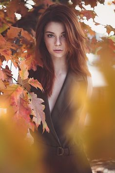 automn beauty by Fabrice Meuwissen #xemtvhay