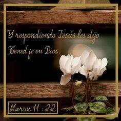 PON TU FE EN JESÚS, PORQUE SIN FE ES IMPOSIBLE AGRADAR A DIOS.