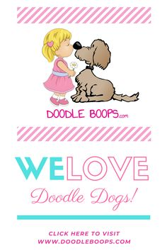 Goldendoodles, Labradoodles, Sheepadoodles, Bernadoodles, Saint Berdoodles, Shepadoodles, Newfiepoos, and any other version of Doodle, we love them all!