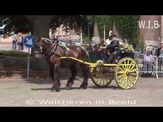 Sjezenrijden in Middelburg 13 07 2017 walchereninbeeld Gepubliceerd op 15 jul. Films, Horses, Youtube, Animals, Nostalgia, Animales, Movies, Animaux, Cinema