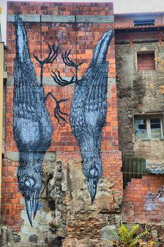 Zaragoza, Street  art