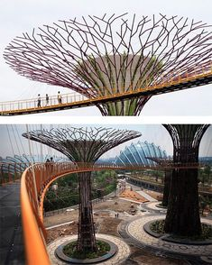 Residential Landscape Architecture Design Process For The Private Residence Pavilion Architecture, Futuristic Architecture, Amazing Architecture, Landscape Architecture, Landscape Design, Architecture Design, Future Buildings, Modern Buildings, Singapore Garden