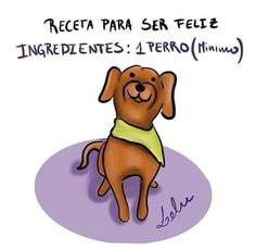 Animals And Pets, Cute Animals, Amor Animal, Milanesa, Dog Quotes, Cat Life, Cat Memes, I Love Cats, Dog Friends