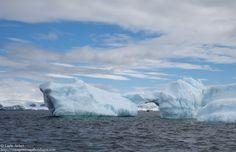 Thème Vive le froid 21/04/15: Icebergs droit devant! Antarctique.
