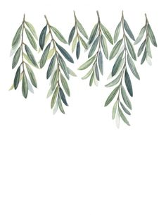 Olive Branches Print - Olive Branch Leaves painting - Olive Branches - Greenery painting - Green Branches - Greenery - Home Decor Print -art