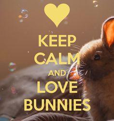 KEEP CALM AND LOVE BUNNIES . Another original poster design created with the Keep Calm-o-matic. Buy this design or create your own original Keep Calm design now. Cant Keep Calm, Stay Calm, Keep Calm And Love, Keep Calm Posters, Keep Calm Quotes, Funny Bunnies, Cute Bunny, Jolie Phrase, Keep Calm Signs