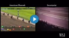 If American Pharoah Raced Secretariat The Belmont Stakes, Show Horses, Race Horses, Preakness Stakes, Triple Crown Winners, American Pharoah, Horse Videos, Sport Of Kings, Amazing Race