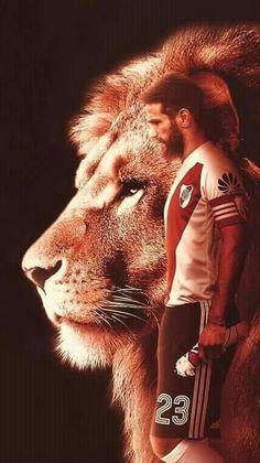Ponzio el leon Barcelona Futbol Club, Soccer Uniforms, Chevrolet Camaro, Carp, Lion, Animals, Grande, Gaston, Sumo