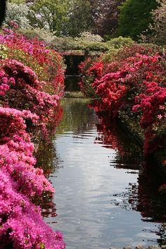 Keukenhof Gardens, The Netherlands.  Photo:  Taniuszka, via Flickr