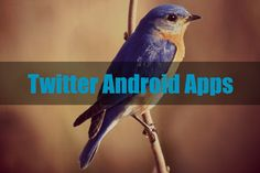 If you own a android phone your twitter followers may really be increased easily with these android ap for Twitter. Most twitter power users and business users prefer mobile based application for managing twitter since its instant and can be done anywhere.