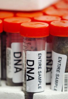 Police Checkpoints Requesting DNA Samples in Alabama