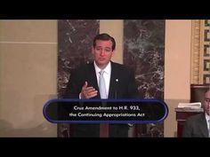 Sen. Ted Cruz Delivers First Major Floor Speech Offering an Amendment to Defund ObamaCare