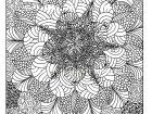 Zen and Anti stress | Coloring Pages for adults