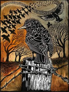 Jardine Gallery - Ian MacCulloch Illustration and Printmaking The bird on the post seems to be a young starling, but the others are ravens Linocut Prints, Art Prints, Block Prints, Scratchboard, Guache, Art Graphique, Wood Engraving, Woodblock Print, Bird Art