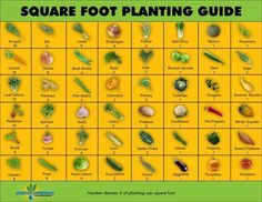 Sqr ft gardening.. number is how many plants per ft