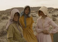In Meek's Cutoff, director Kelly Reichardt presents an image of how the West was probably won — not with cowboys, six-shooters and bravado but by the strength and resolve of women going into the wilderness on foot with their families.