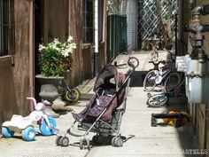 Cómo visitar el barrio judío de Williamsburg (Brooklyn) por libre Williamsburg Brooklyn, Baby Strollers, Birds, The Neighborhood, Vacations, Bird, Baby Prams