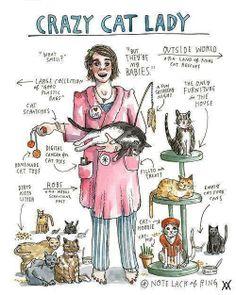 anatomy of a cat lady....