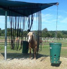 Gurtband-Vorhang als Chill-Out Zone für das Pferd