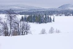 Landscape from Wirkkula Village Kuusamo Finland Aili Alaiso