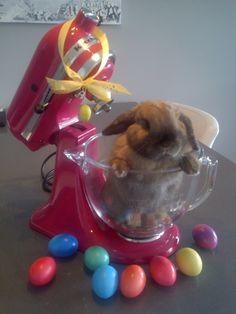 Easter KitchenAid bunny