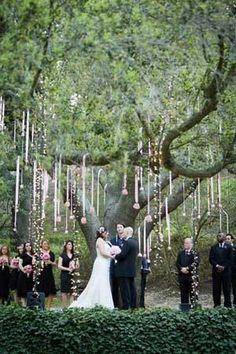 Garden Wedding Ceremony Decorations Hanging Lights New Ideas Tree Wedding, Forest Wedding, Garden Wedding, Wedding Ceremony, Wedding Venues, Wedding Day, Decor Wedding, Branches Wedding, Wedding Album