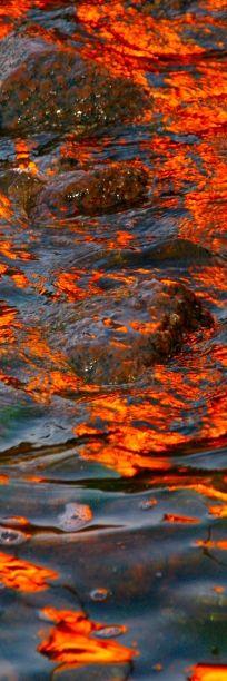 #interesting #orange #images