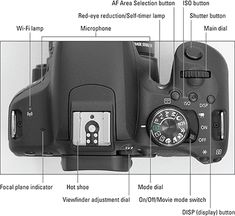 Canon EOS Rebel For Dummies Cheat Sheet - dummies Dslr Photography Tips, Photography Cheat Sheets, Photography Lessons, Photography Courses, Digital Photography, Amazing Photography, Photography Equipment, Professional Photography, Vintage Photography