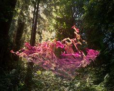 Path by Mark Dorf – Fubiz™