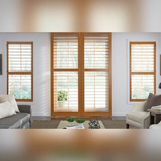 Are Plantation shutters the right choice for your windows? Budget Blinds, Shutters, Windows, Blinds, Shades, Window Shutters, Exterior Shutters, Shutterfly, Ramen