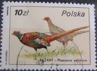 znaczki pocztowe ptaki