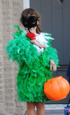 DIY Hummingbird Costume!  Great Kids Halloween Costume Made from Boas, Feathers, Pipe Cleaners and Glue!