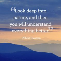 """""""Look deep into nature, and then you will understand everything better."""" New Year Inspirational Quotes, Encouraging Quotes For Women, Motivational Quotes For Life, Positive Quotes, Inspiring Quotes, Amazing Quotes, Quotes About New Year, Year Quotes, Life Quotes Love"""