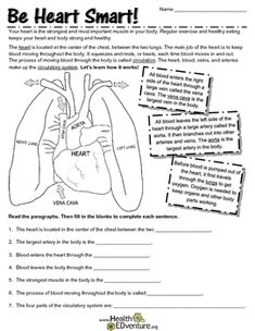 Science fun parts of the heart pinterest learning activities science fun parts of the heart pinterest learning activities purpose and activities ccuart Gallery